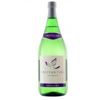 Вино игристое белое Фризантино Novellina Frizzantino Bianco Amabile 1.5 L.